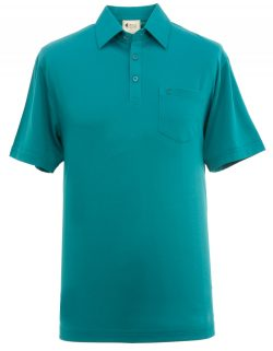 Green man's polo shirt