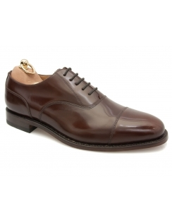 200CH Capped Oxford Lace Shoe - Brown