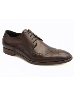 Whitehall Calf Brogue - Brown